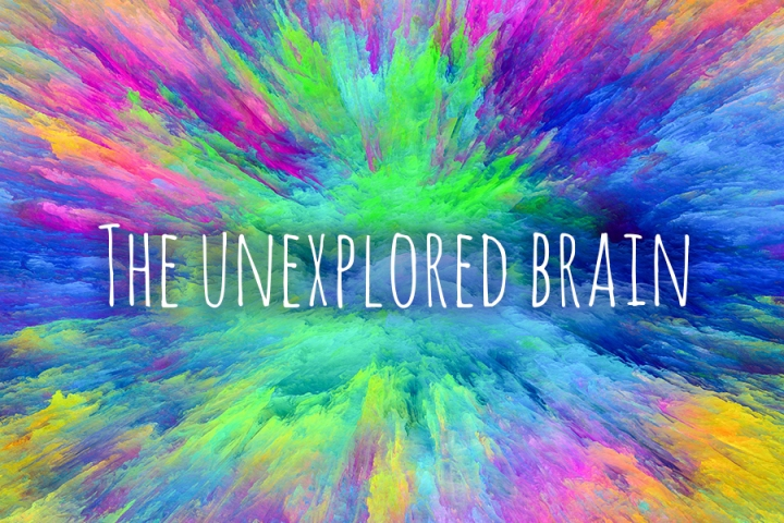 The Unexplored Brain