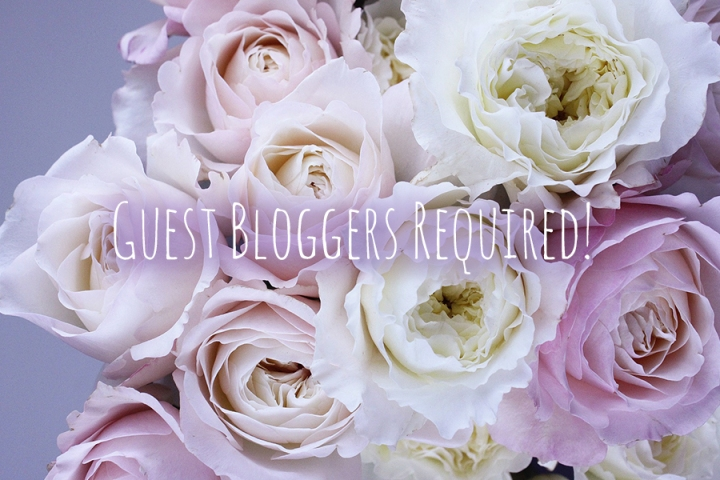 Blog Update: Guest Bloggers